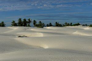De plage en plage entre Recife et Salvador: la beauté des dunes de Mangue Sêco